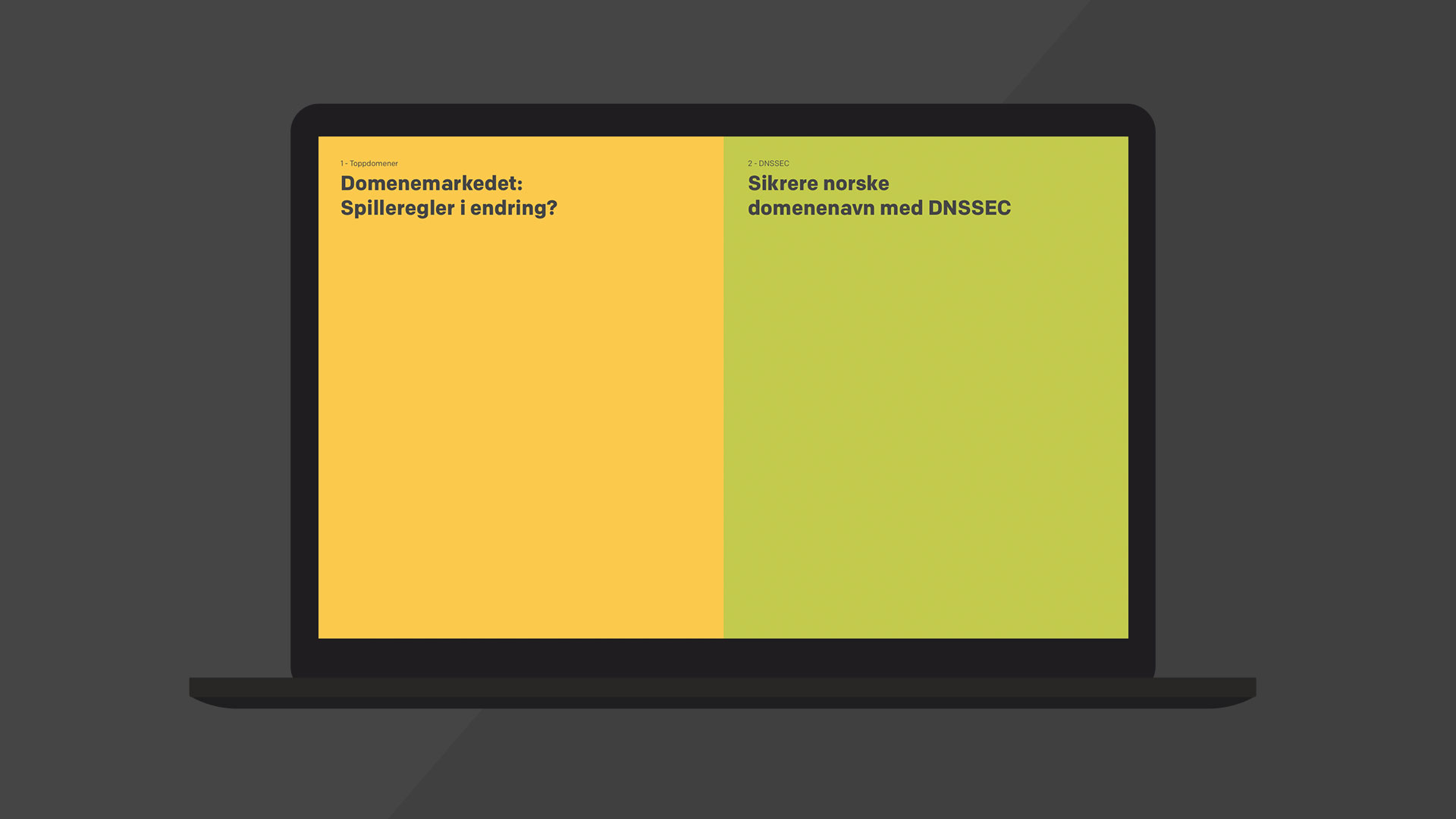Norid-mockup-desktop-2.jpg