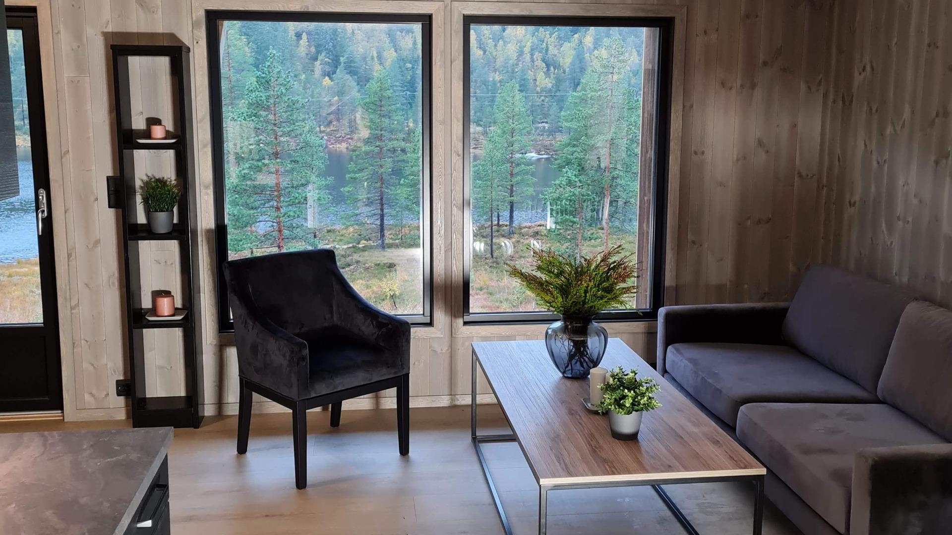 Stue, utsikt, oppgradert hytte